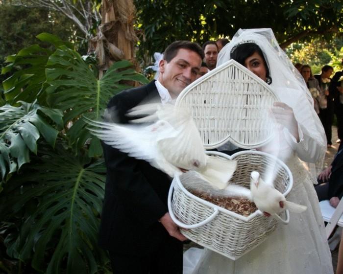 Tauben-zur-Hochzeit-aus-einem-Korb