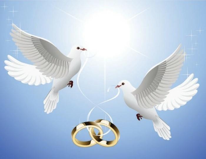 Tauben-zur-Hochzeit-eine-Zeichnung