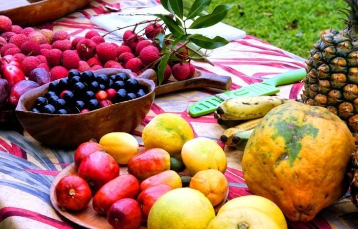 Tropische-Früchte-für-ein-Picknick