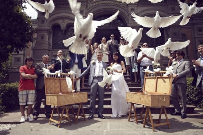 Viele-Weisse-Hochzeitstauben-aus-zwei-Korben