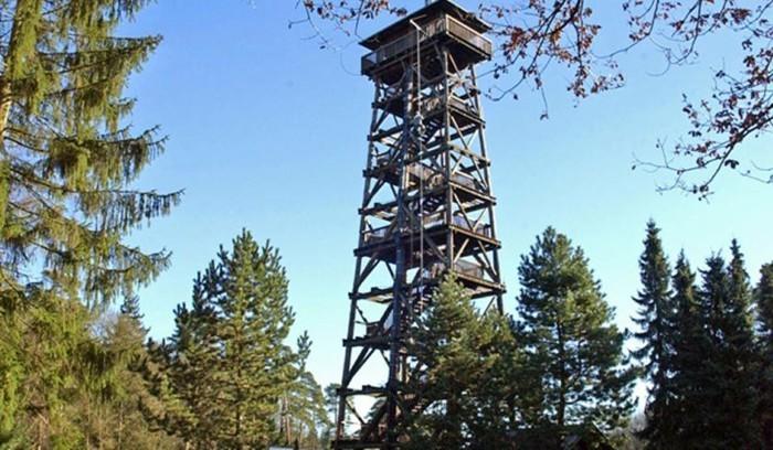 Wildpark-Schwarze-Berge-der-Turm