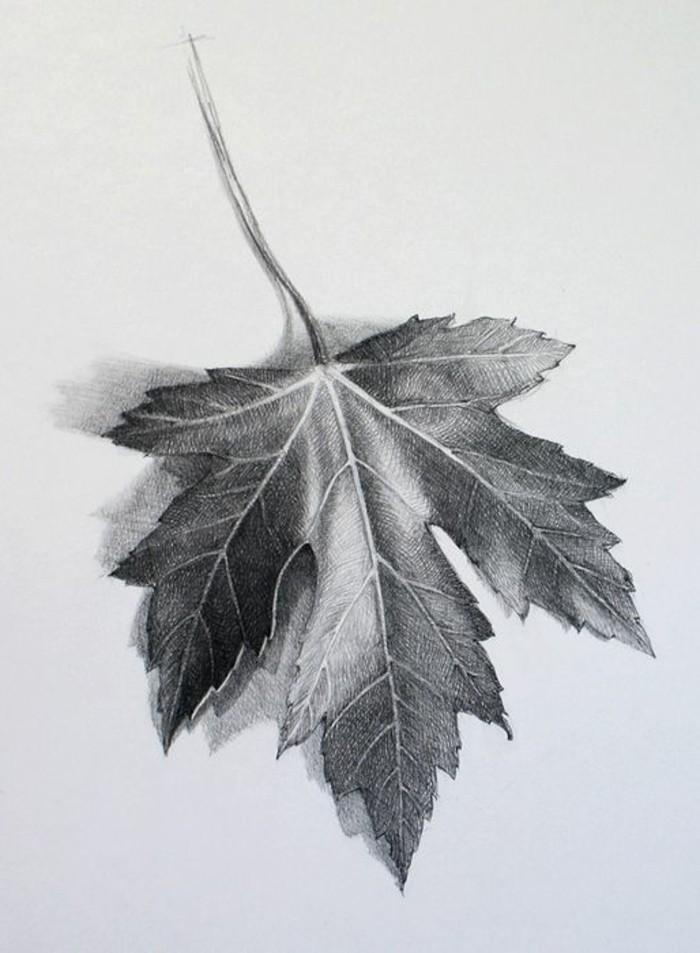 Zeichnungen-mit-Bleistift-ein-Blatt