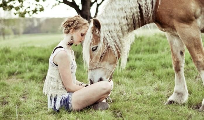 mehr als 70 super schöne pferde bilder  archzine