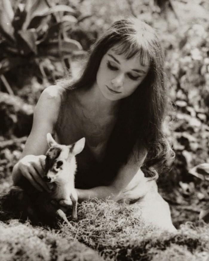 exotische-Haustiere-Audre-Hepbern-Reh-Film1