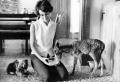Exotische Haustiere der Bekannten: Schnauzen im Spotlight