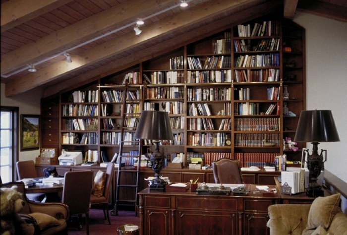 Bücherregal-Leiter-für-einen-Professor