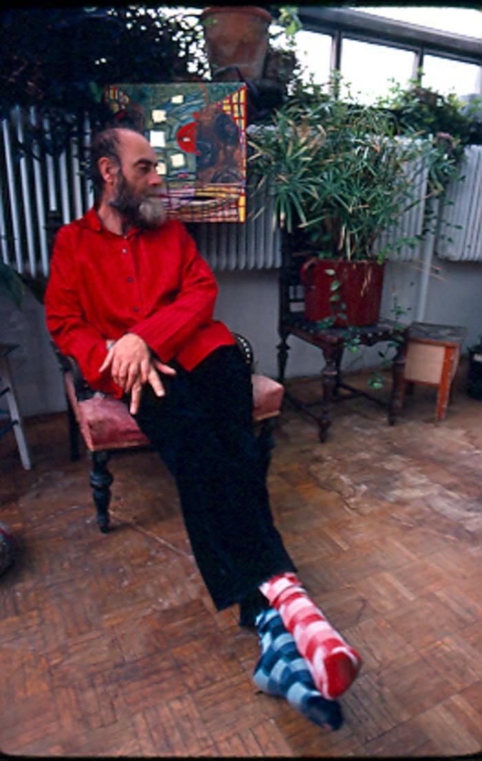 Hundertwasser-Friedenreich-Architektur-Kunst-Umwelt-verschiedene-Socken