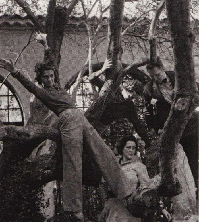 Luxusvilla-La-Pausa-von-Coco-Chanel-Foto-Hosen-Freunde-Baum