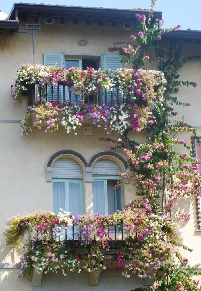 Terrasse-mit-Sichtschutz-aus-Blumen