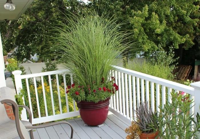 Terrasse-mit-Sichtschutz-einen-großen-Blumentopf