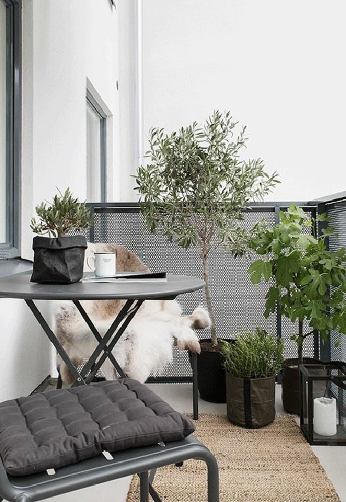 Terrassen-Sichtschutz-aus-Holz-um-Bonsei-Bäume-zu-verstecken
