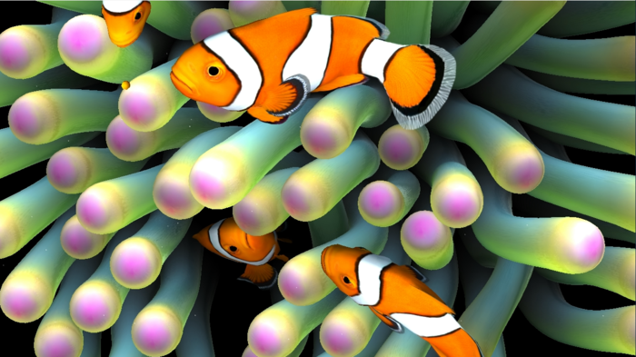 aquarium-schenken-die-aquaristik-ist-ein-weit-verbreitetes-hobby