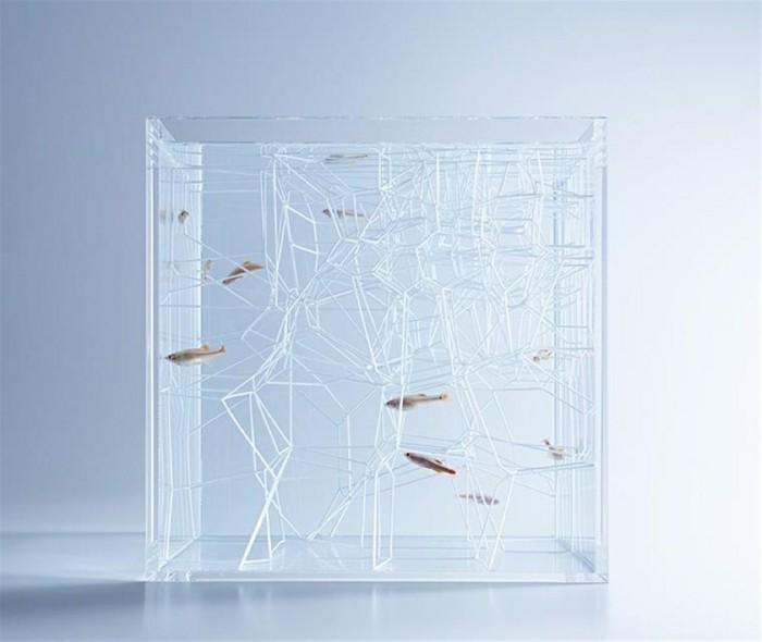 aquarium-schenken-die-konzeptkunstwerke-von-haruka