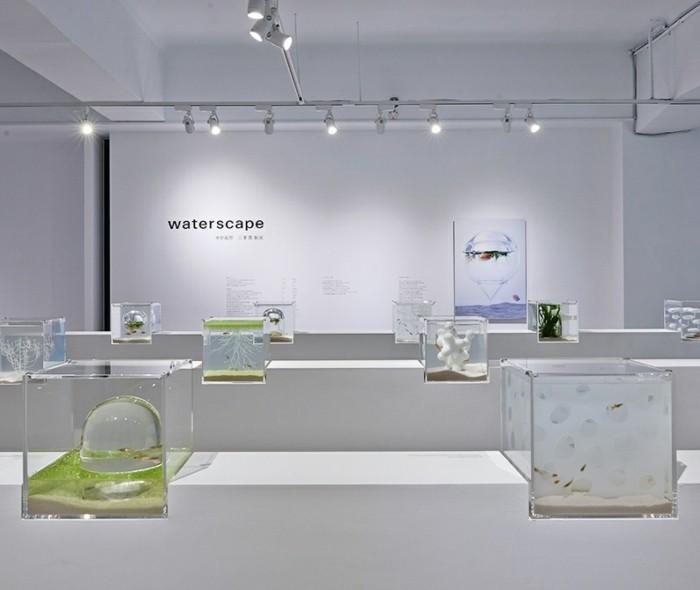 aquarium-schenken-die-konzepkunstwerke-von-misawa