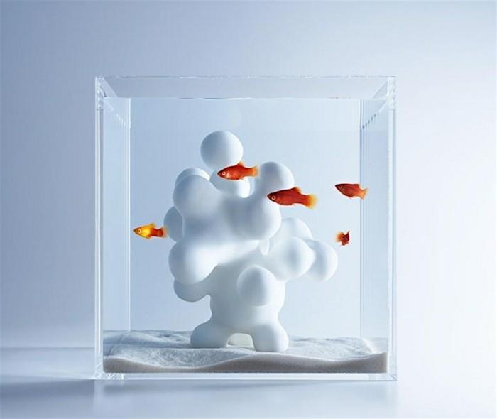 aquarium-schenken-die-schönen-göasbehälter