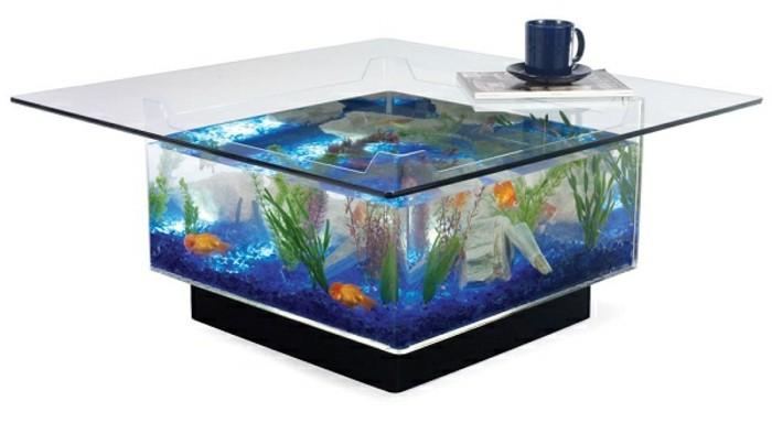aquarium-schenken-ein-aquarium-kann-sehr-originell-aussehen