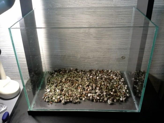 aquarium-schenken-ein-schlichtes-aquarium