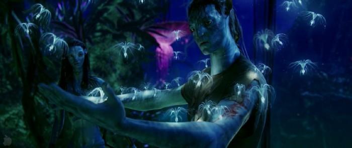 blaue-wunder-avatar