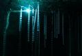 Blaue Wunder – die Ruakuri Höhle in Neuseeland