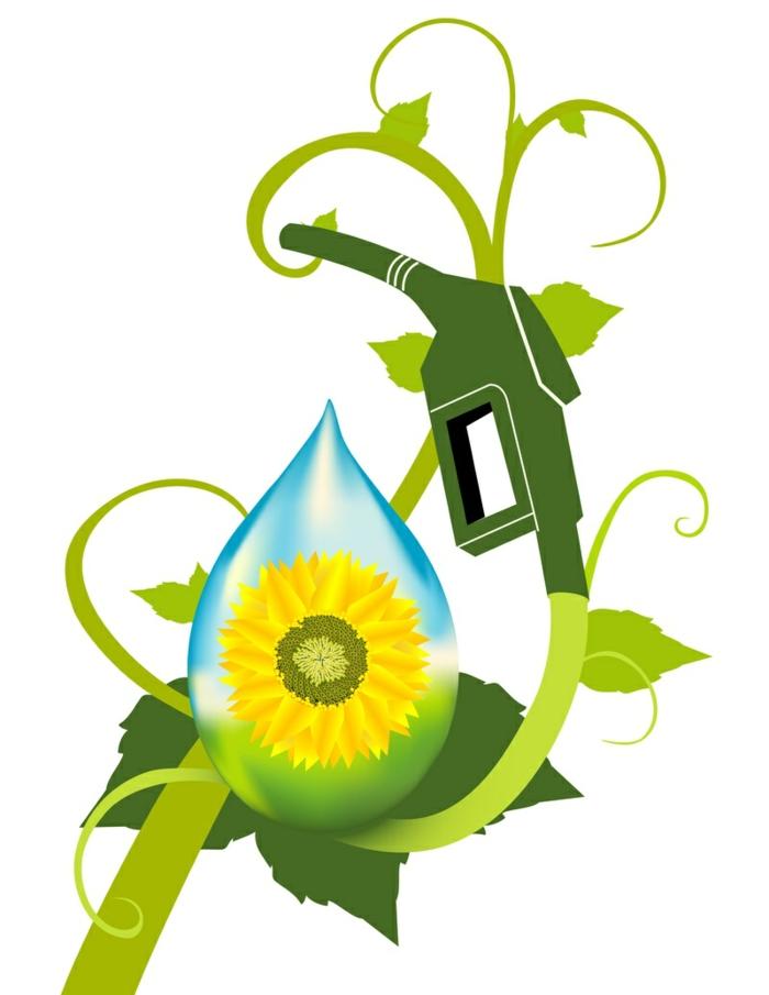 drohne-die-gattung-sorghum-können-auch-als-ausgansstoffe-für-die-biokraftstoffherstellung-verwendet-werden