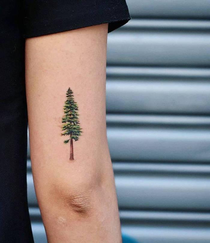 Farbiges Tattoo am Oberarm, Kiefer Tattoo, Tattoo Ideen für Frauen