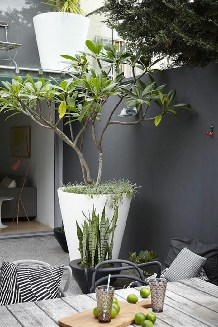 garten-gestangestaltung-und-topfpflanze