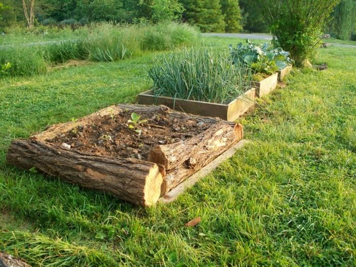 kräuterhochbeet-bauen-wenn-man-ein-solches-kräuterhochbeet-bauen-will-muss-man-holz-verwenden