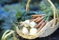 Kräuterhochbeet bauen, um eine reichere Ernte zu haben!