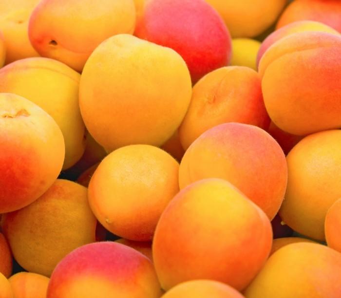 detox-entgiftung-aprikosen