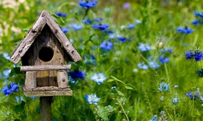 vogelfutterhaus-selber-bauen-ein-schönes-vogelhaus-selber-bauen