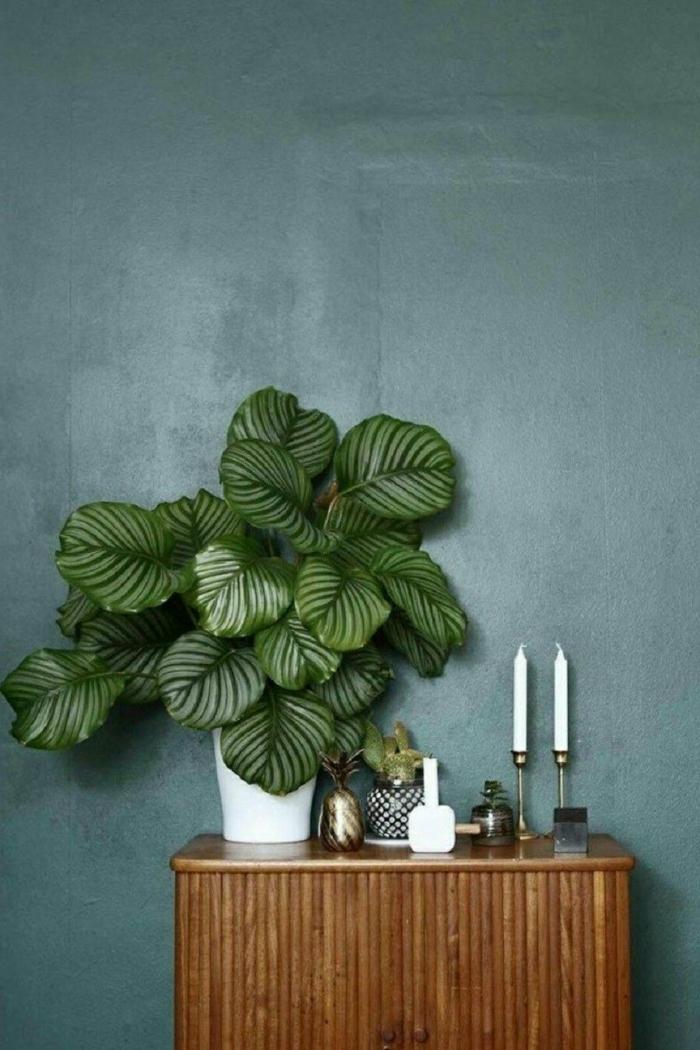 Angesagte Ideen für Dekoration, grüne Wand, Wohnzimmer Ideen modern, Blattpflanze, Kerzen
