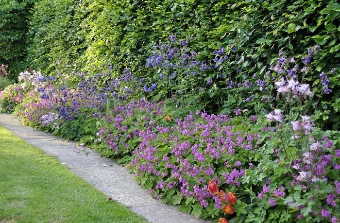 Gartenwege-gestalten-Ein-auffälliges-Exterieur