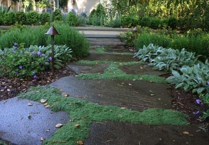 Gartenwege-gestalten-Eine-kreative-Gestaltung
