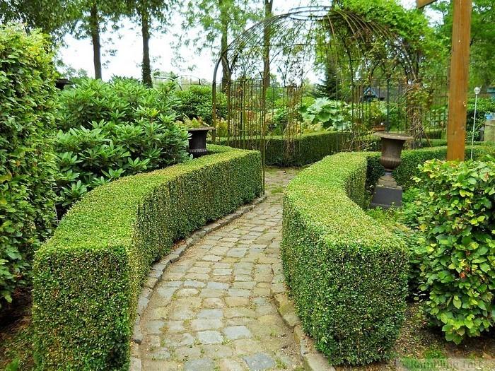 Gartenwege-gestalten-Eine-super-Ausstrahlung