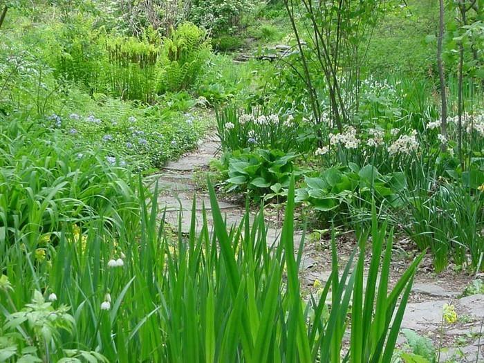 Gartenwege-gestalten-Eine-verblüffende-Deko