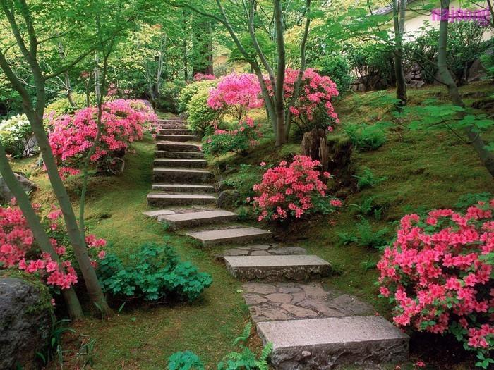 Gartenwege-gestalten-Eine-wunderschöne-Atmosphäre