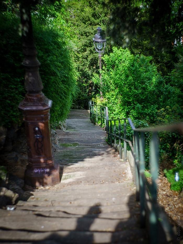 Gartenwege-gestalten-außergewöhnliche-Entscheidung