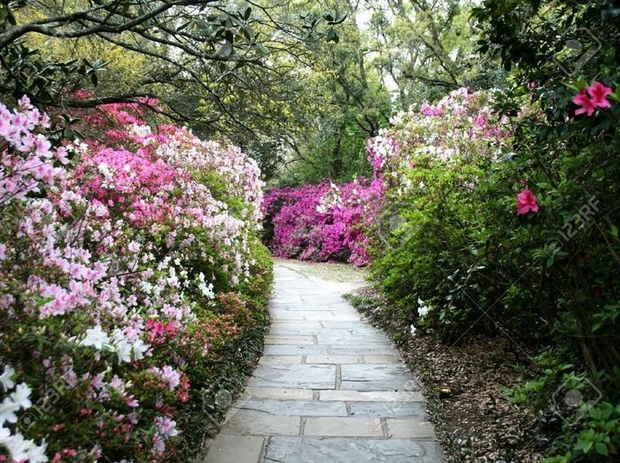 Gartenwege-gestalten-wunderschöne-Entscheidung