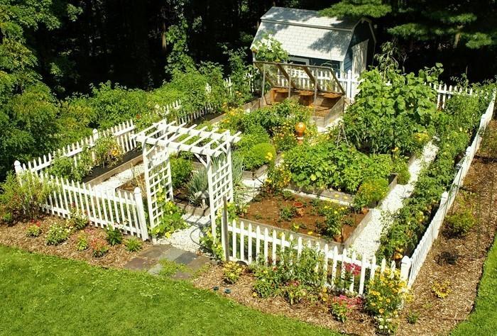 Gartenzaun-Sichtschutz-Ein-tolles-Design