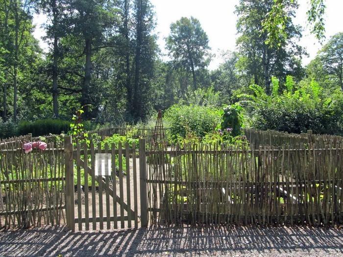 Gartenzaun-Sichtschutz-Eine-auffällige-Atmosphäre