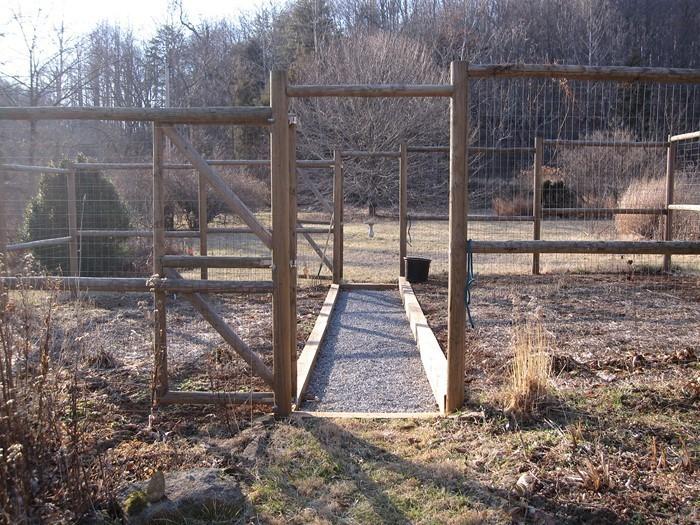 Gartenzaun-Sichtschutz-Eine-auffällige-Gestaltung