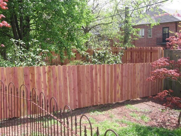Gartenzaun-Sichtschutz-Eine-wunderschöne-Deko