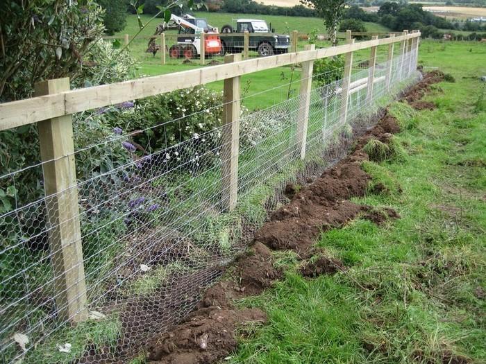 Gartenzaun-Sichtschutz-coole-Entscheidung