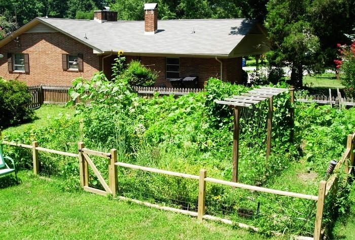 Gartenzaun-Sichtschutz-moderne-Entscheidung