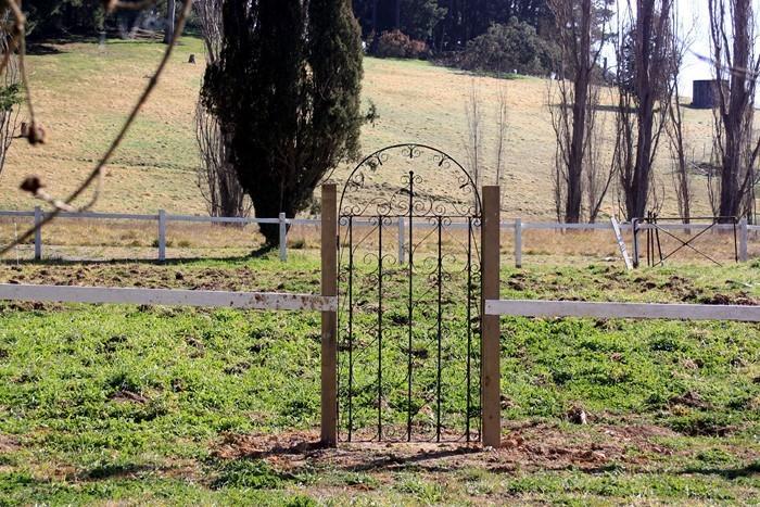 Gartenzaun-Sichtschutz-super-Entscheidung