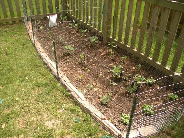 Gartenzaun-Sichtschutz-tolle-Entscheidung