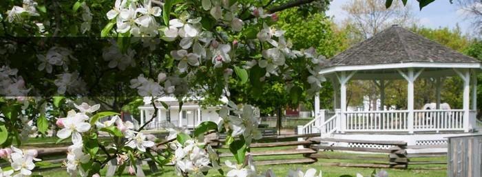 Heiraten-im-Garten-Eine-wunderschöne-Atmosphäre
