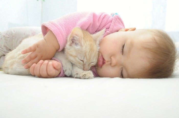 süßes baby und kleine katze schlafen zusammen