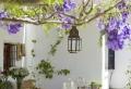 40 mediterrane Tischdeko Ideen – exotische Reiseziele zu Hause!