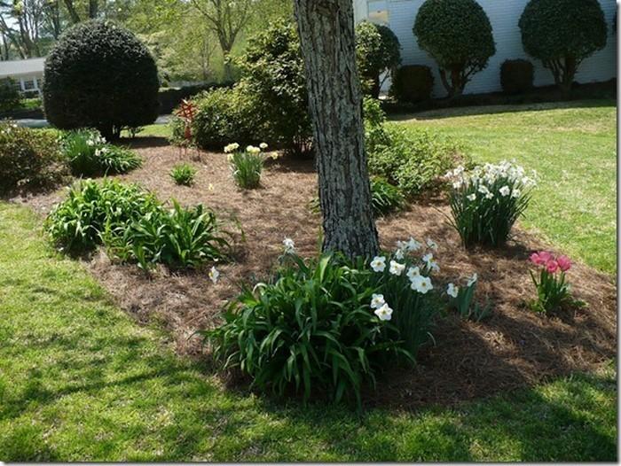 Vorgarten-gestalten-Ein-modernes-Design